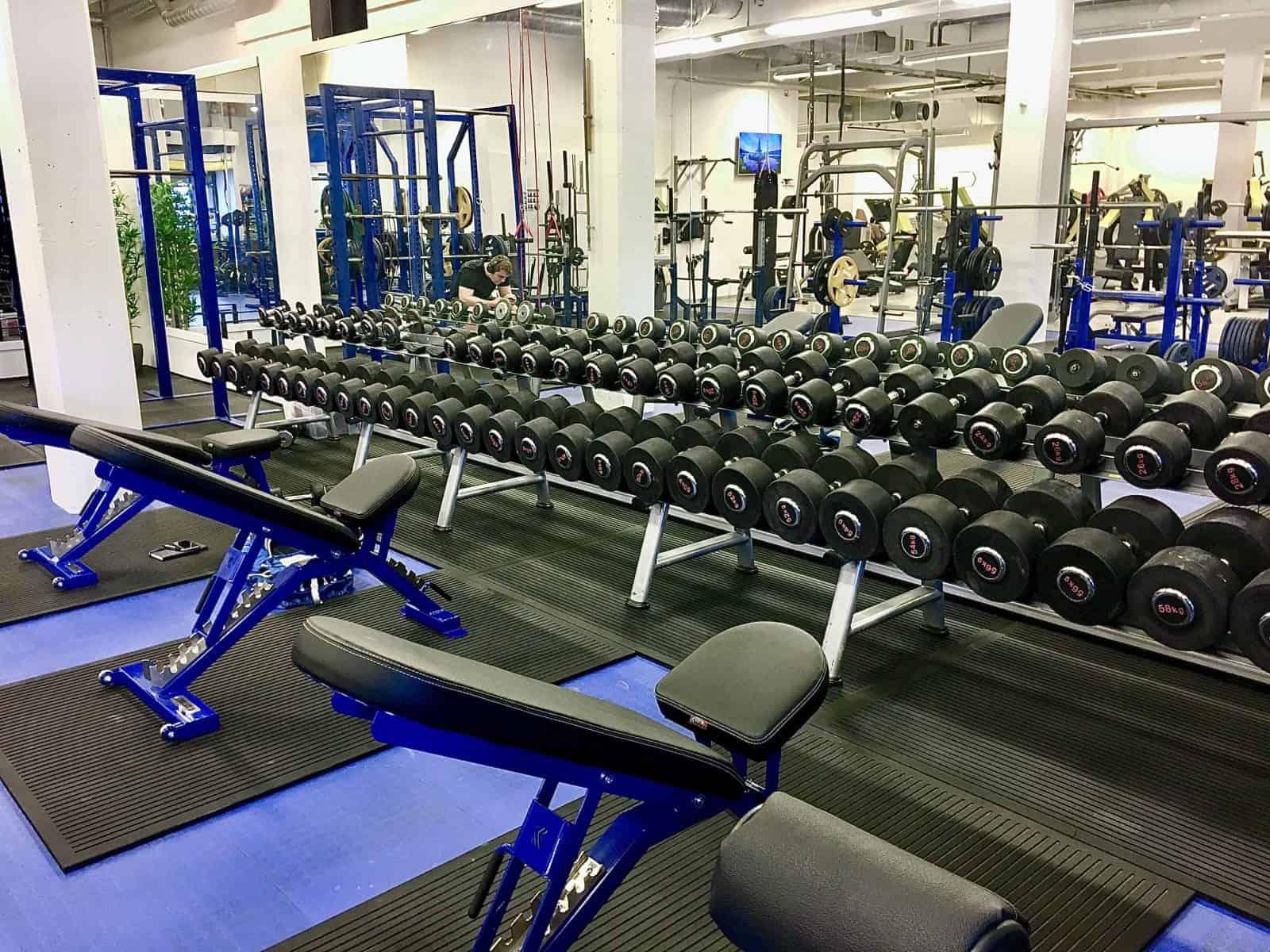 Manualer fra 2-60 kg med to kg intervaller. Gjør at du kan øke oftere enn med 2.5 kg intervaller som de fleste andre gym tilbyr.